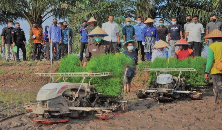 Wali Kota Pekanbaru Saksikan Kontrak Farming Antara PT SPM Bersama UPJA Bina Karya